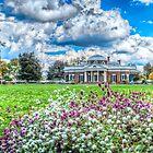 Monticello by Viv Thompson
