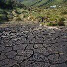 Dried bog in Strath Dionard, Foinaven Scotland by Mishimoto