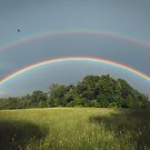 Full Rainbow by David Lamb