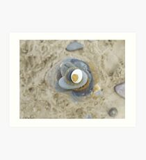 Pebble tower from above Art Print