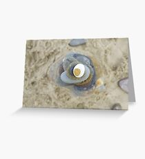 Pebble tower from above Greeting Card