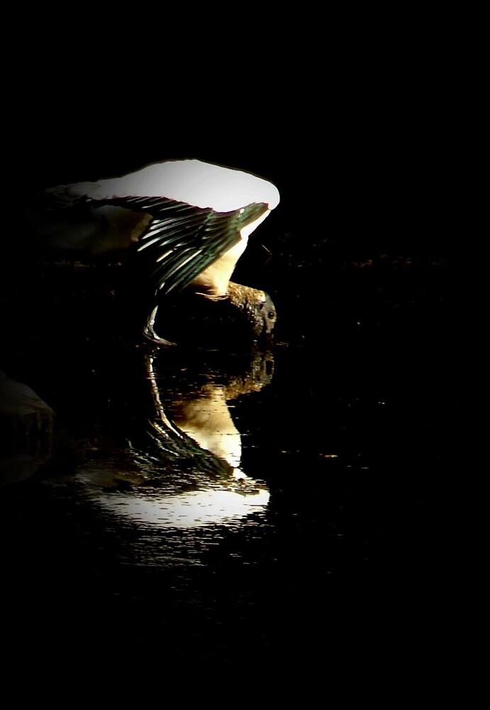 Angel for Iris..  by Elizabeth Rodriguez