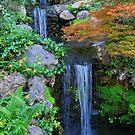 Japanese Garden Palette by Igor Pozdnyakov