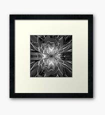 Glass coldness  Framed Print