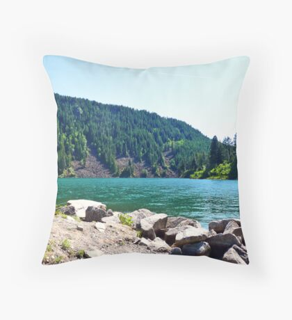 Buttonhook Bay at Farragut State Park Throw Pillow