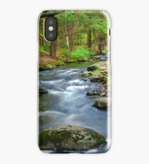 George Childs State Park iPhone Case
