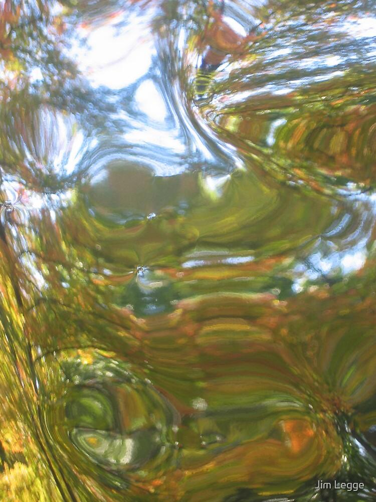 Untitled - Fall Mystery by Jim Legge
