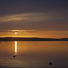 padstow sunset  by jaffa