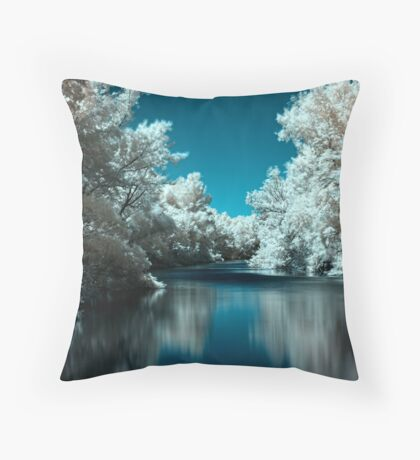 Backwater (I.)  Throw Pillow