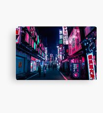 Nocturnal Alley Canvas Print