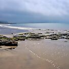 Low Tide At Charmouth 2 by Susie Peek