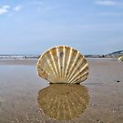 Patterns In Nature - Charmouth by Susie Peek