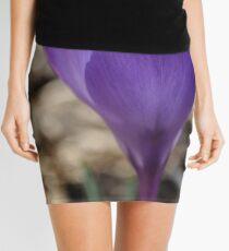 Spring Beauty Mini Skirt