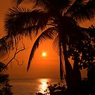 Tropical Sunset in Paradise by Kerry Dunstone