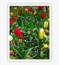 """""""Flower Bed of Beauty"""", Photo / Digital Painting Sticker"""