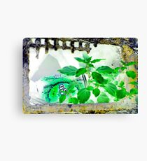 Nature will win GvG Canvas Print