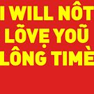 I will not love you long time by Robin Lund