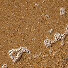 Coastal Winter 5 by coastal