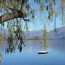 Lakes 1 by coastal