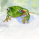 Litoria caerulea - Green Tree Frog by melhillswildart