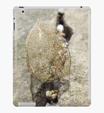 Leaf skeleton iPad Case/Skin