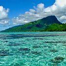 Moorea, French Polynesia by Cindy Ritchie