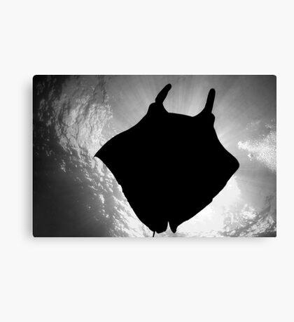 Manta Silhouette B&W Canvas Print