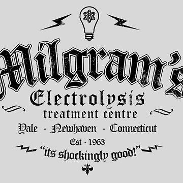 Milgrams Electrolysis by siege103