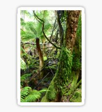Green and Cool - Mount Field National Park Sticker