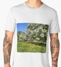 blossoming apple-trees in the city park Men's Premium T-Shirt