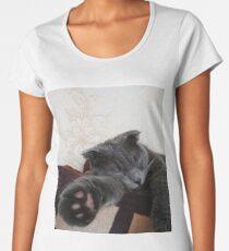 lop-eared gray cat sleeping on the sofa Women's Premium T-Shirt