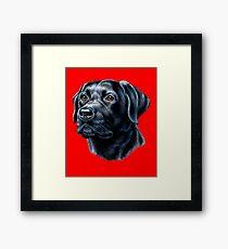 Black Labrador Owner Portrait  Black Lab Pet Owner Framed Print
