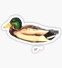 Duck Sticker Sticker