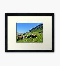 The Lake District: Herdwick Sheep & The Langdales. Framed Print
