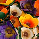 Paper Flowers by Virginia Maguire