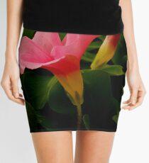 Pretty in Pink Mini Skirt