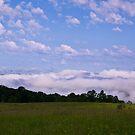Foggy Morning by BigD