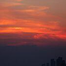 Smog by Aiyana