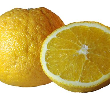 Orange by Zzart
