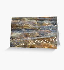clear sea water on a pebbled beach Greeting Card