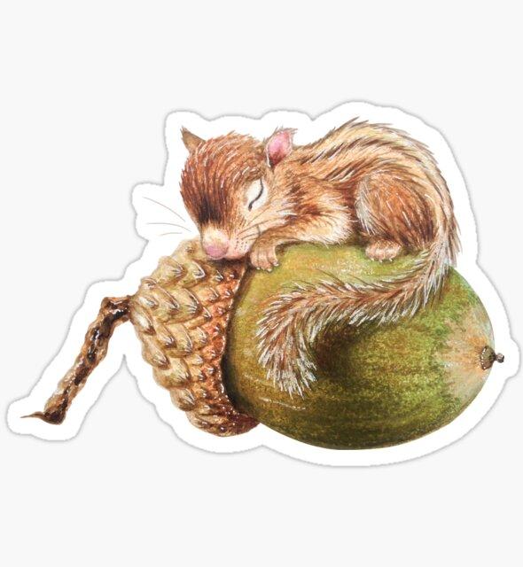 Sleeping squirrel by Maria Tiqwah by Maria Tiqwah