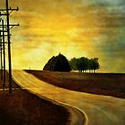 On a Country Road by Brian Gaynor
