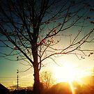 Morning Sunsets by Kklove