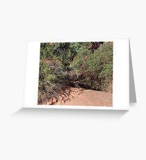 Desert Brush 2 Greeting Card