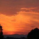 Sunset by Amy Trebilco