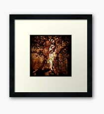 Restore the Desolate Years Framed Print