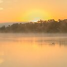 Murray River Sunrise 01 by Werner Padarin