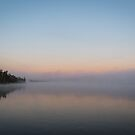 Mist on Lake Yellowstone by Michelle McConnell