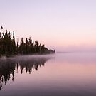 Misty Yellowstone Lake by Michelle McConnell
