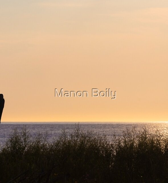 Simplicity by Manon Boily
